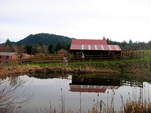orcas farm