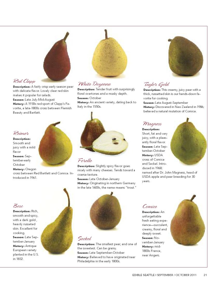 pear parade2