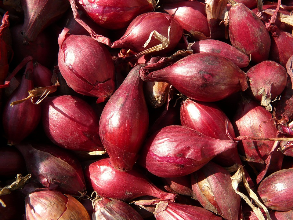 red-shallots-5773_960_720