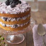 blackberrycake_cropped