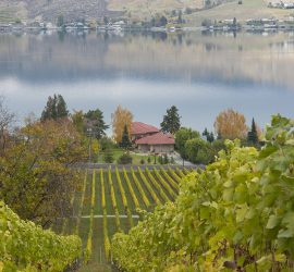 Lake Chelan AVA, Washington