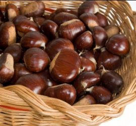 wicker basket with chestnuts isolated on white background